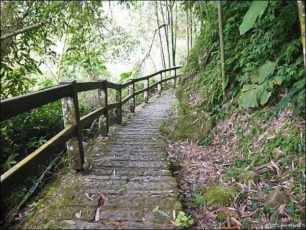 嘉義青年嶺步道、燕子崖、千年蝙蝠洞P1530123_調整大小1.JPG