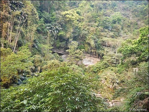 嘉義青年嶺步道、燕子崖、千年蝙蝠洞P1530126_調整大小1.JPG
