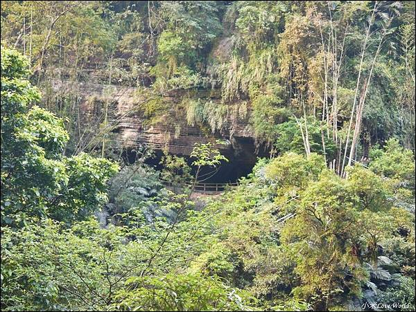 嘉義青年嶺步道、燕子崖、千年蝙蝠洞P1530127_調整大小1.JPG