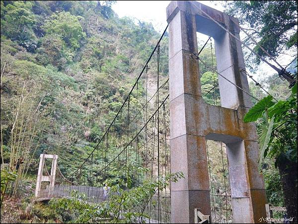 嘉義青年嶺步道、燕子崖、千年蝙蝠洞P1530134_調整大小1.JPG