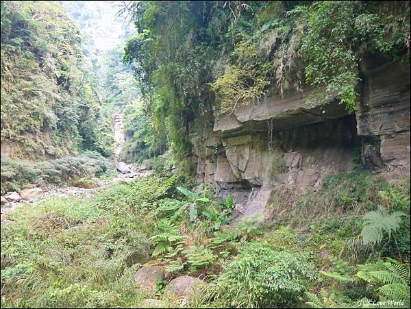 嘉義青年嶺步道、燕子崖、千年蝙蝠洞P1530139_調整大小1.JPG