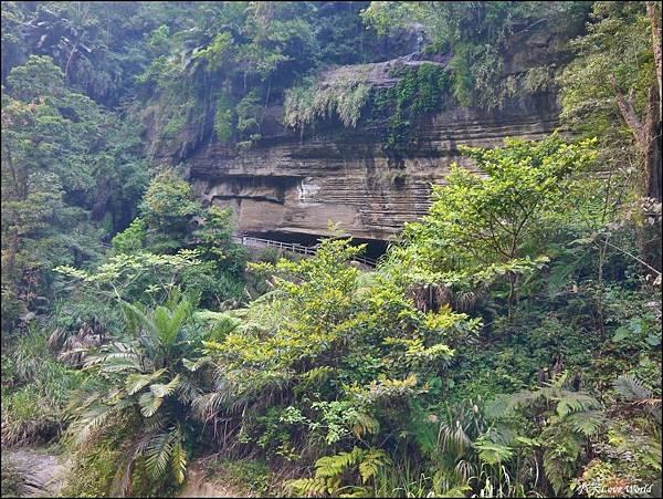 嘉義青年嶺步道、燕子崖、千年蝙蝠洞P1530144_調整大小1.JPG