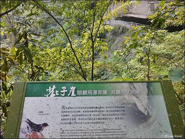 嘉義青年嶺步道、燕子崖、千年蝙蝠洞P1530148_調整大小1.JPG