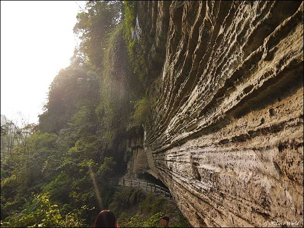 嘉義青年嶺步道、燕子崖、千年蝙蝠洞P1530150_調整大小1.JPG