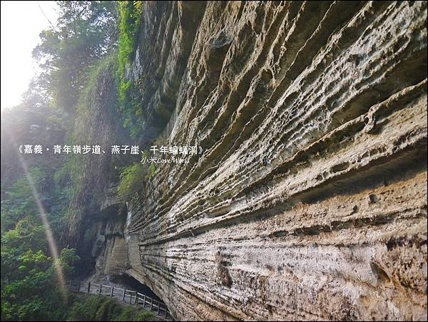 嘉義青年嶺步道、燕子崖、千年蝙蝠洞P1530153_調整大小1.JPG