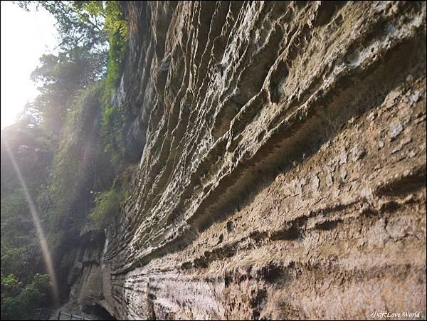 嘉義青年嶺步道、燕子崖、千年蝙蝠洞P1530154_調整大小1.JPG