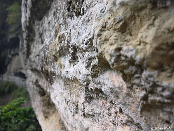 嘉義青年嶺步道、燕子崖、千年蝙蝠洞P1530157_調整大小1.JPG