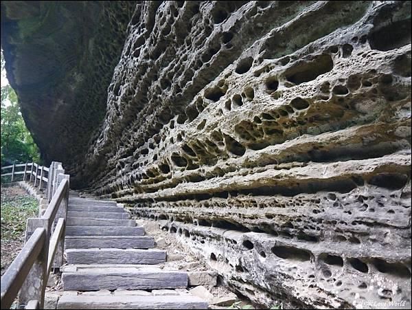 嘉義青年嶺步道、燕子崖、千年蝙蝠洞P1530174_調整大小1.JPG