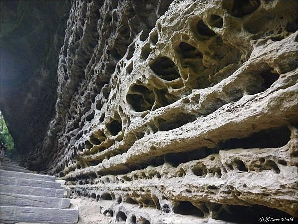 嘉義青年嶺步道、燕子崖、千年蝙蝠洞P1530184_調整大小1.JPG