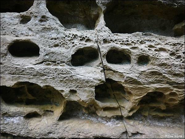 嘉義青年嶺步道、燕子崖、千年蝙蝠洞P1530188_調整大小1.JPG