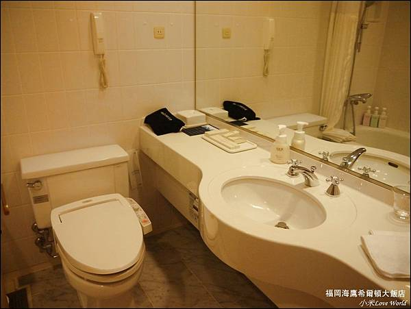 福岡海鷹希爾頓大飯店P1500888_調整大小1.JPG