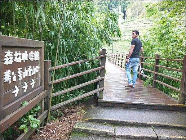 新竹山上人家森林農場P1560051_調整大小1.JPG