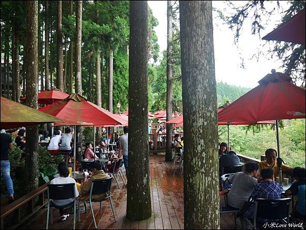 新竹山上人家森林農場P1560072_調整大小1.JPG