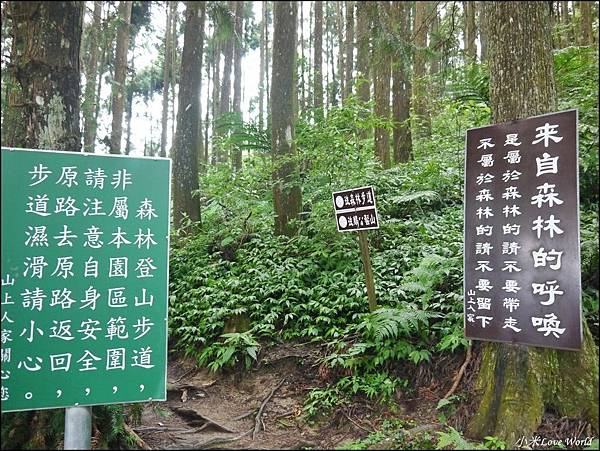 新竹山上人家森林農場P1560077_調整大小1.JPG