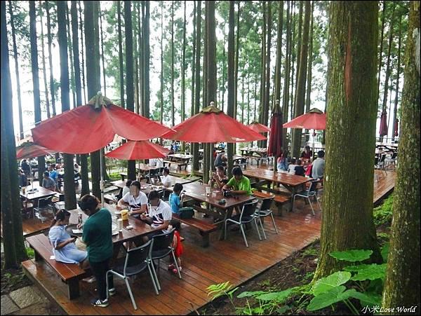 新竹山上人家森林農場P1560088_調整大小1.JPG