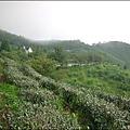 新竹山上人家森林農場P1560099_調整大小1.JPG