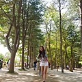 韓國南怡島P1420914_調整大小1.JPG