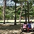 韓國南怡島P1420936_調整大小1.JPG