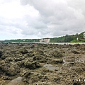 台東富山護漁區P1540984_調整大小1.JPG