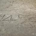 台東富山護漁區P1550041_調整大小1.JPG