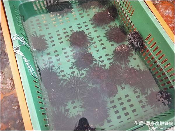 花蓮鹽寮龍蝦餐廳P1560510_調整大小1.JPG