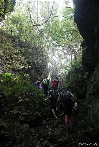 高雄壽山猴洞鐘乳石洞P1630157_調整大小1.JPG