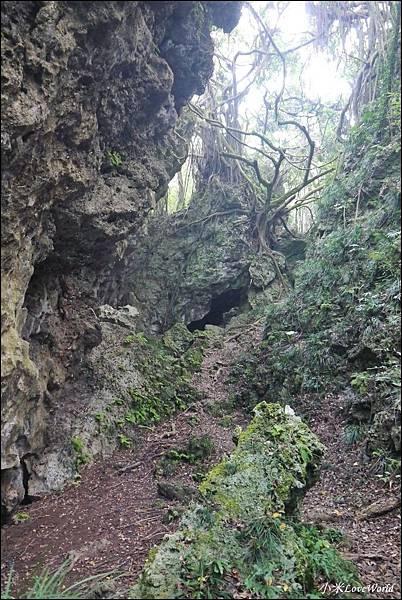 高雄壽山猴洞鐘乳石洞P1630160_調整大小1.JPG
