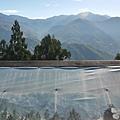 清境白雲渡假山莊P1620589_調整大小1.JPG