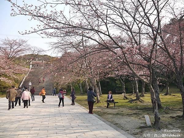日本九州西公園NishikoenP1500974_調整大小1.JPG