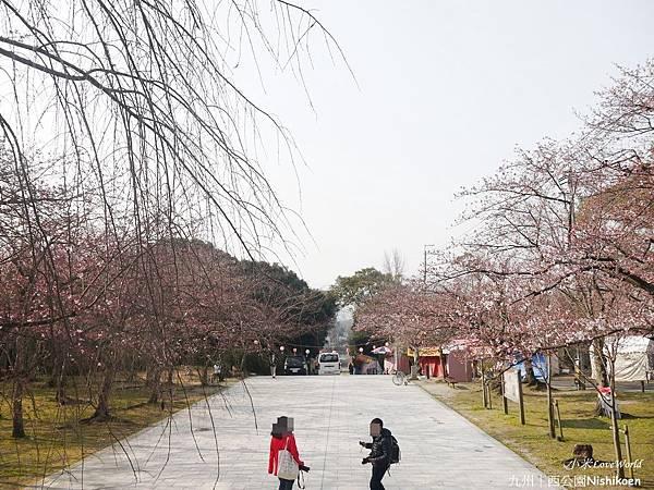 日本九州西公園NishikoenP1500976_調整大小1.JPG