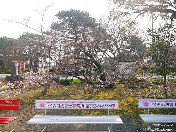 日本九州西公園NishikoenP1500990_調整大小1.JPG