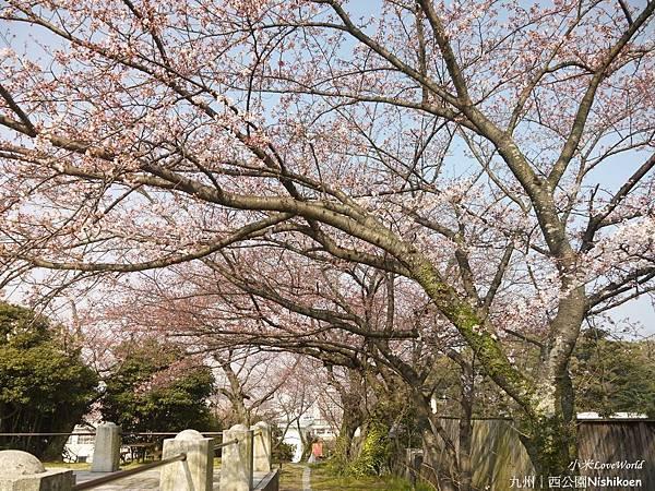 日本九州西公園NishikoenP1510028_調整大小1.JPG