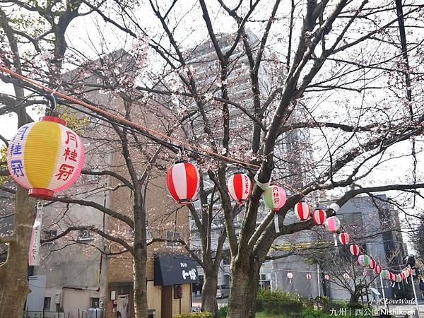 日本九州西公園NishikoenP1510033_調整大小1.JPG