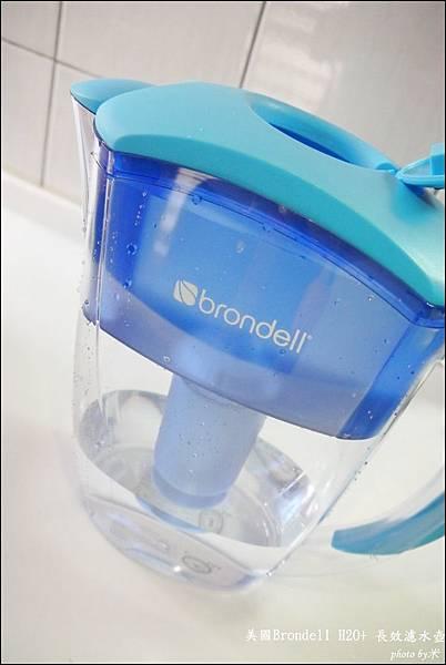 美國BrondellH2O+ 長效濾水壺+長效濾芯P1710074_調整大小1.JPG