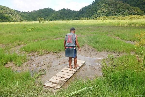 東源森林遊樂區與東源水上草原P1770255_調整大小1.JPG