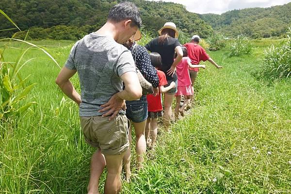東源森林遊樂區與東源水上草原P1770258_調整大小1.JPG