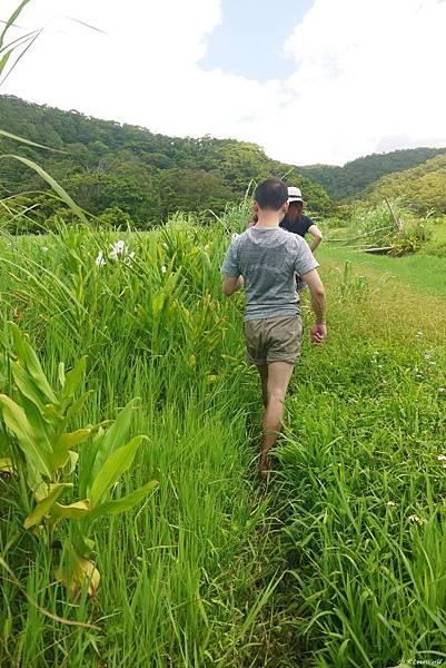 東源森林遊樂區與東源水上草原P1770262_調整大小1.JPG
