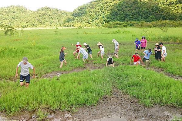 東源森林遊樂區與東源水上草原P1770306_調整大小1.JPG