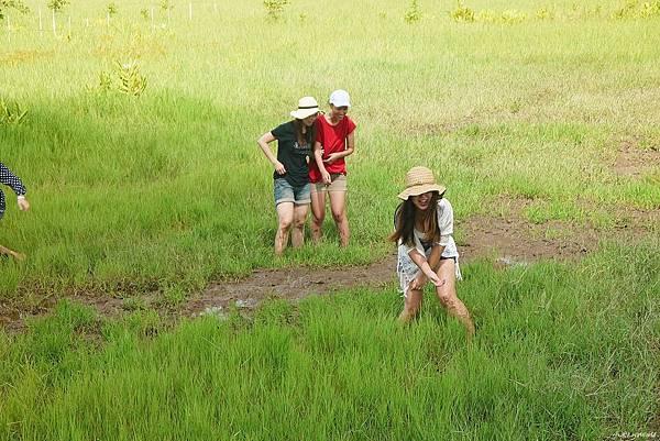 東源森林遊樂區與東源水上草原P1770315_調整大小1.JPG