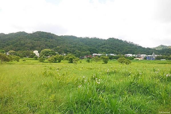 東源森林遊樂區與東源水上草原P1770335_調整大小1.JPG