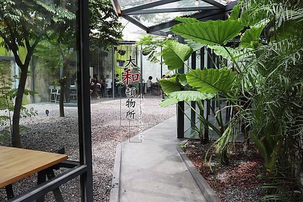 [食記]屏東竹田-大和頓物所 可以廢墟也可以森林系的美拍咖啡廳