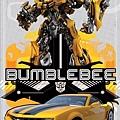 BUMBLEBEE 大黃蜂.jpg