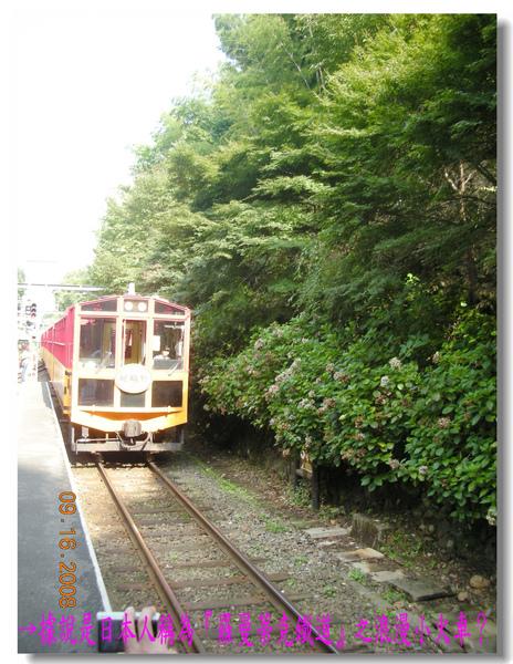 日本人稱為羅曼蒂克鐵道之浪漫小火車.jpg