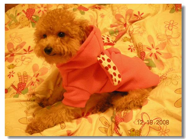 粉紅兔子裝.jpg