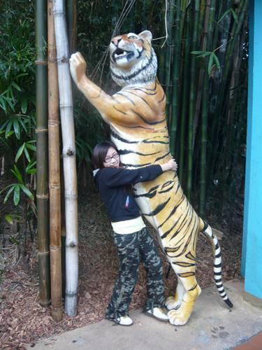 抱虎爺好害羞呀!