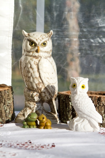 harry-potter-wedding-2-owls.photogallery