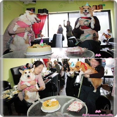 切蛋糕3.jpg