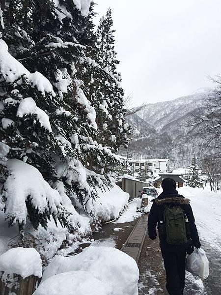 1-2017 1月日本人名古屋 白川鄉♪☃_1506拷貝.jpg