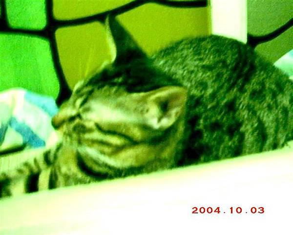7M的蕾蕾17--任何角度,我的蕾蕾都是媽咪的漂亮寶貝