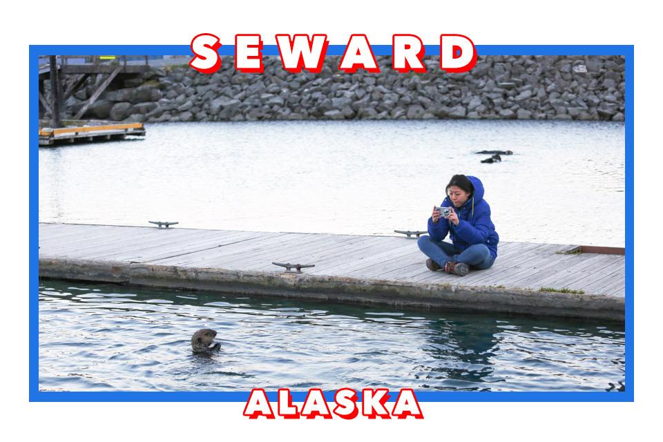 阿拉斯加Seward住宿 Seward Front Row Bed and Breakfast/海獺領地看野生海獺/Alaska Sealife Center